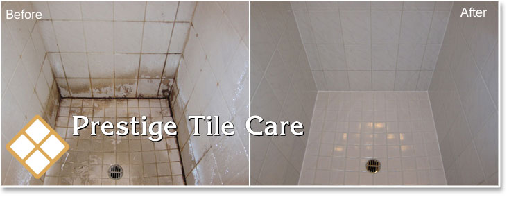 About prestige tile care - Cleaning mold off bathroom walls ...